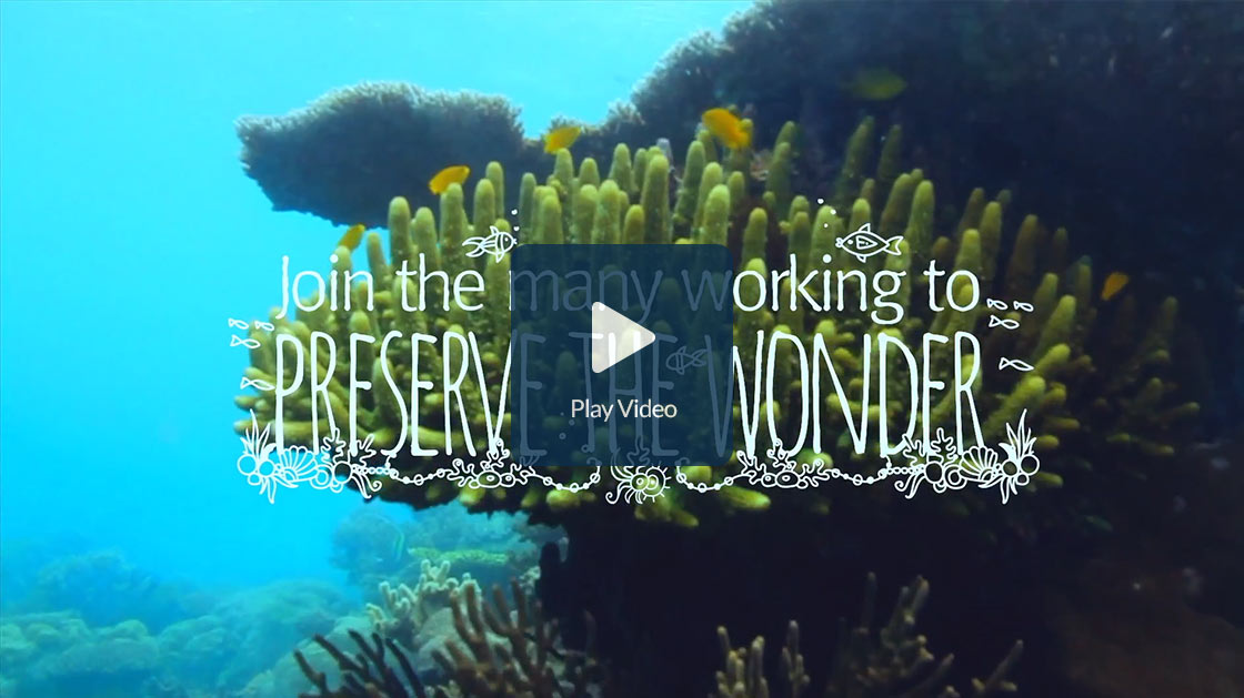 Preserve the Wonder of the Great Barrier Reef video
