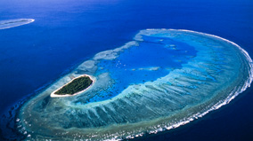 Aerial view of Lady Musgrave Island