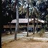 The superintendent's residence at Aurukun, circa 1959-60