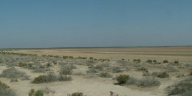 Types Of Salinity Environment Land And Water