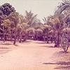 Mission house at Aurukun, October 1973