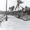 Roads and landscape on Dauan Island (date unknown)