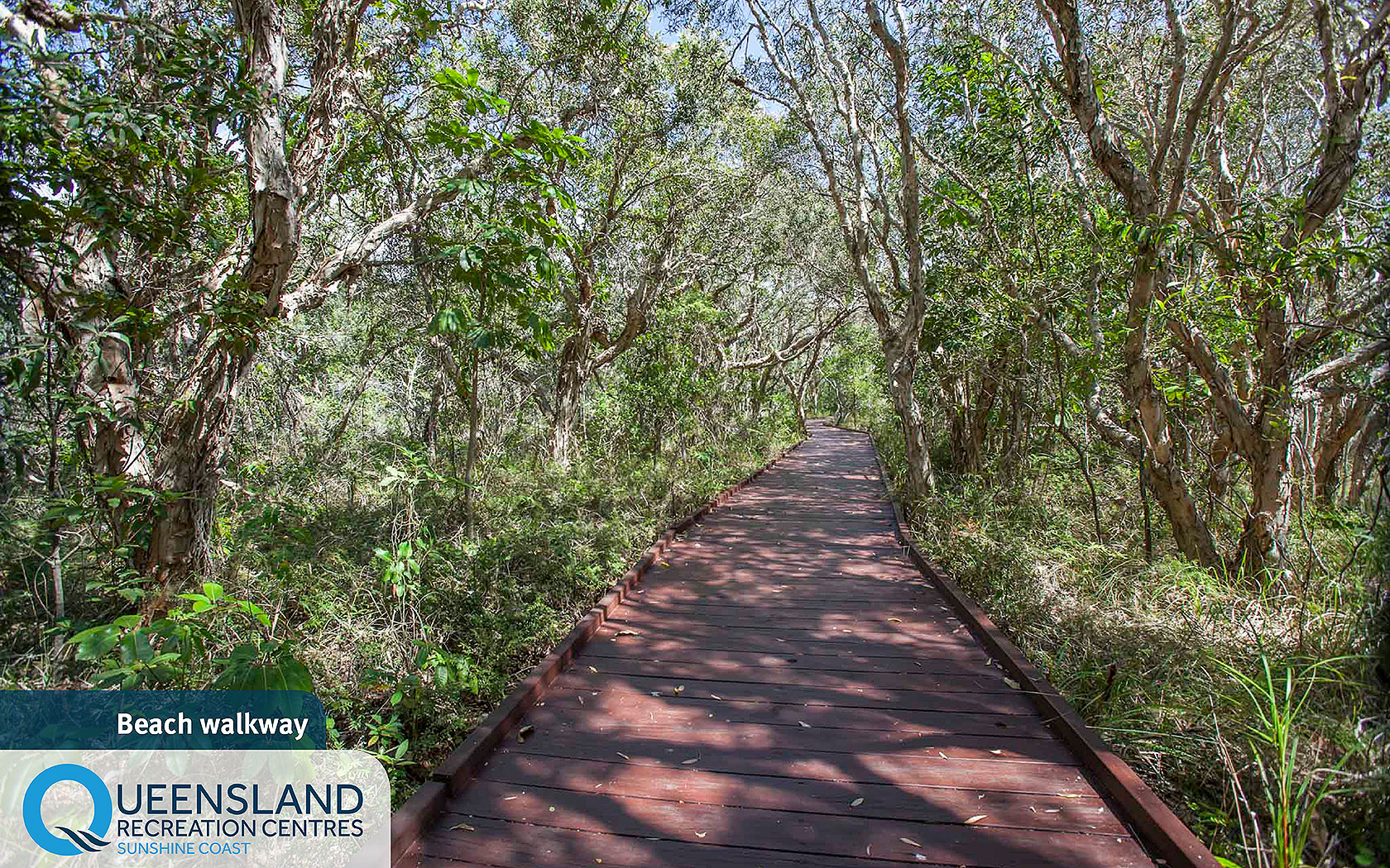 Wooden walkway through bushland to Currimundi Lake and Dicky Beach from the Sunshine Coast Recreation Centre
