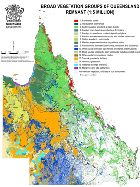 A map of Queensland's regional ecosystems and remnant vegetation
