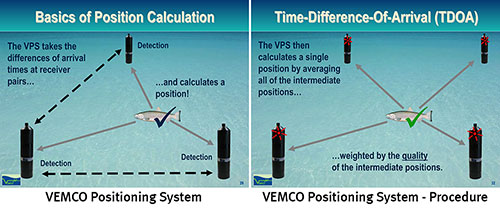 Diagrams of the VEMCO positioning system (VPS) and procedure.