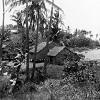 Houses on the beach at Erub Island, 1949
