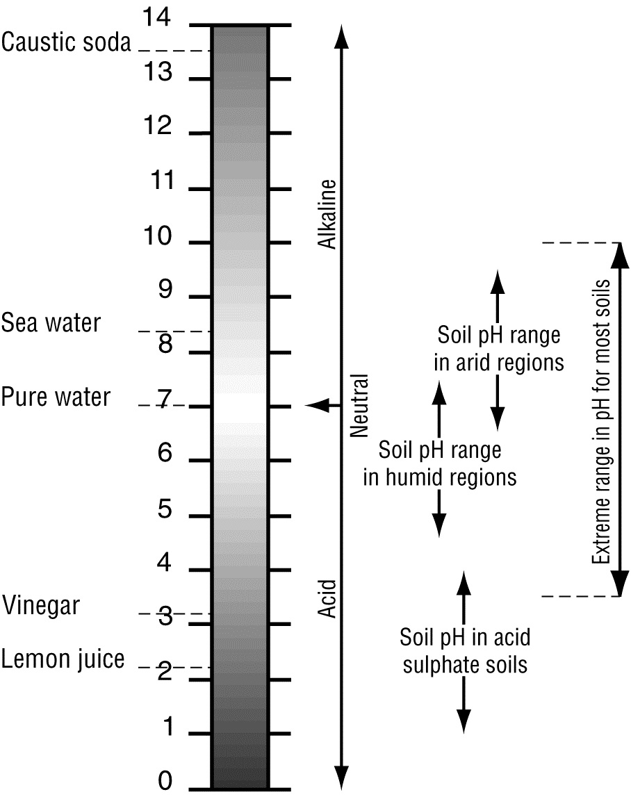 soil ph environment, land and water queensland governmentthe range of ph values found in soils (view large version)