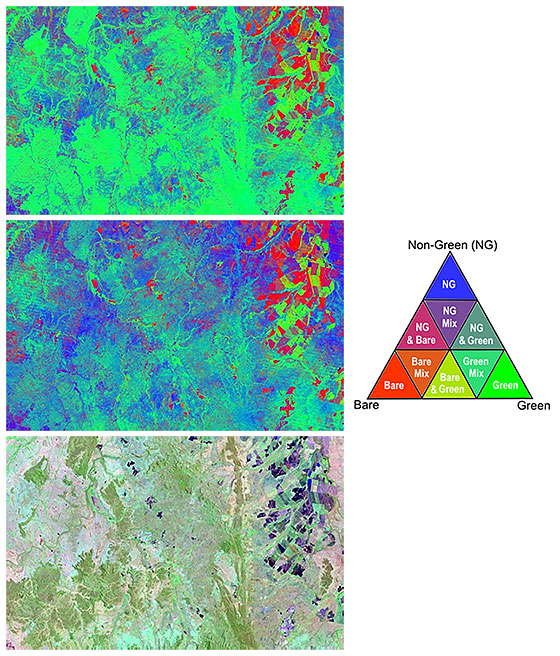 Image examples of a seasonal fractional cover image and seasonal fractional ground cover image