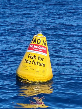 Yellow trapezoid buoy for fish aggregation