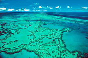 Image courtesy of Tourism and Events Queensland.