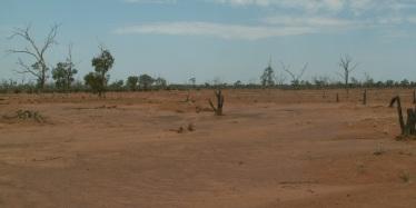 Scalded landscape, western Queensland