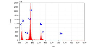 Image of the X-ray spectrum of a dust particle
