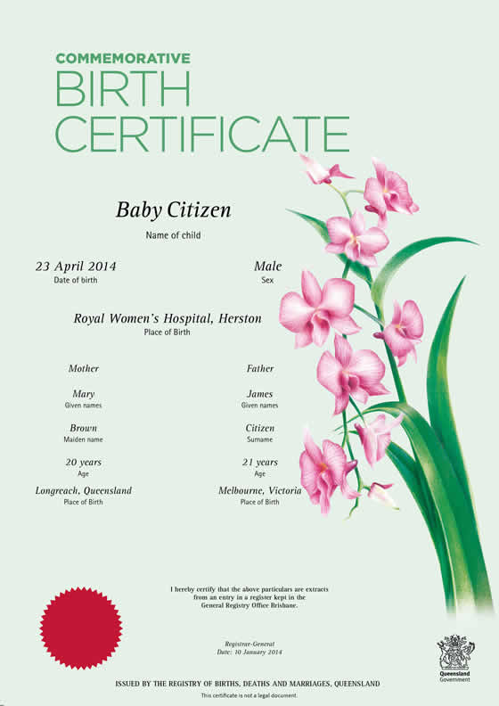 fill in the register a birth and apply for a certificate application form